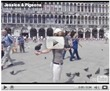 Jessica with pigeons (video)